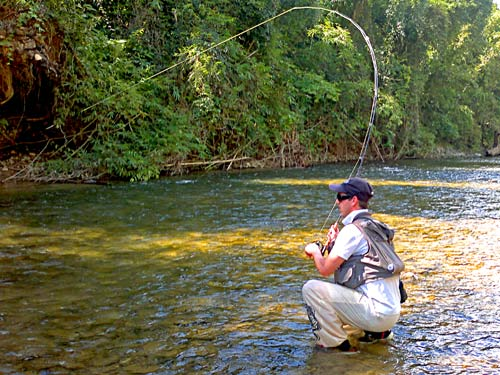 Jungle Fly Fishing, Khao Sok National Park.