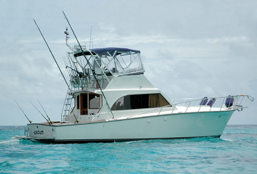 Large sport fishing boats gallery for Large fishing boats