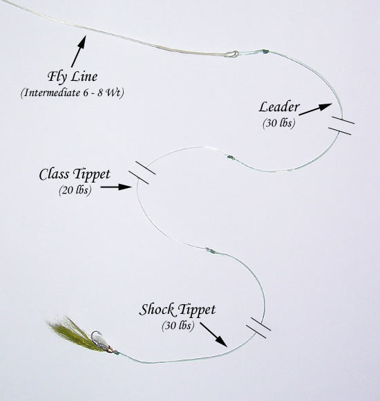 Par lai fly fishing rig freshwater fishing rigs for How to rig a fishing line